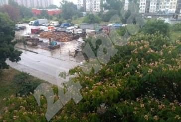 Потоп в Пловдив! Дървета падат, 4 коли са премазани