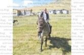 УСПЕХ НАПУК НА СИСТЕМАТА! След 12 г. борба с институции фермерът Л. Коюнджийски вдига мандра в Кочериново