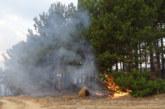 Пожарът край Стара Кресна е овладян