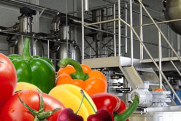 Засилен инвеститорски интерес в Бобошевско, ще строят пореден цех за преработка на плодове и зеленчуци