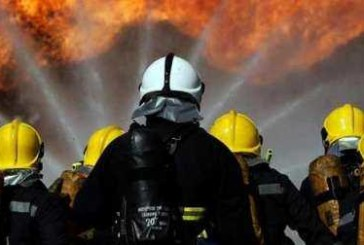 Пожарникари от Кюстендил спасиха домашен любимец, паднал в шахта
