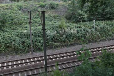 Релсите плувнаха в кръв! Влакът Пловдив – Свиленград премаза жена