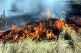 Решено! До 12000 лв. глобите за палене на огън край нивите с жито в Пиринско