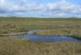 С 240 000 лв. разработват план за управление на най-голямото торфено блато в България
