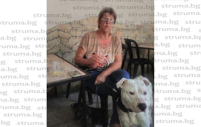 След 16 г. гърбене по портокаловите плантации в Испания! Гурбетчийка намери българския рай в дупнишко село - тя си пие кафето с ракия в барчето, съпругът Рикардо пасе 34 кози по полето
