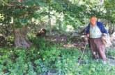 Стадо от 10 овце и чистият пирински въздух на Предел наливат сила на 92-годишния градевец бай Костадин Данчов