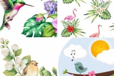Забавен тест с птици разкрива какво ви очаква през лятото
