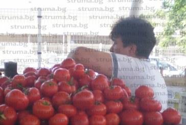 Подигравка с производителите! Търговци затягат примката, купуват кашон домати за 3 лв., картофите – 20 ст. за килограм