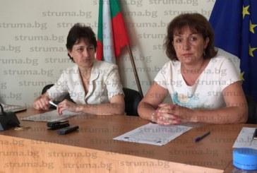 Инспекцията по труда в Благоевград не разреши на тийнейджър да работи в автомивка през ваканцията, в оранжериите масово не носят ръкавици, когато ползват препарати