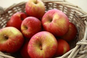 Лесна ябълкова диета топи мазнините ударно
