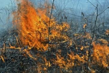 Огнеборци гасиха пожар в Югозапада