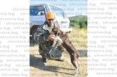 """45-та дружинка на благоевградско селонаправи сефтето на """"пилешкия лов"""",  запалени авджии дадоха старт на новия сезон със запомнящи се софри"""