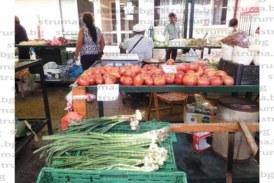 БЪЛГАРСКИ ПАТЕНТ! С левче скочи цената на доматите в Дупница за Голяма Богородица