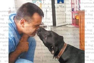 Лабрадор честити първи рождения ден на млад дупнишки ветеринар