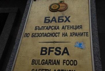 След месец изследвания БАБХ най-после обяви: Няма чума сред животните във Филипово и Мосомища