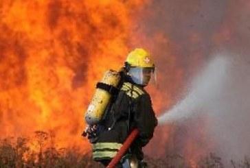 Огнен ад в Пиринско! Пожар изпепели 30 тона сено в Крупник