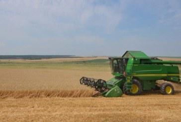 Дъждовете блокират жътвата в Кюстендилско, продължат ли, реколтата остава на полето