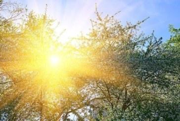 Лятото се завръща, температурите скачат до 32 градуса