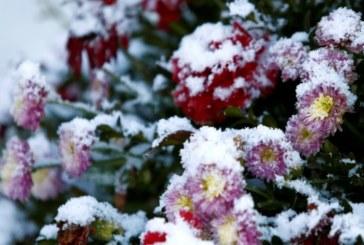 Климатолог: Идва необичайно топла зима