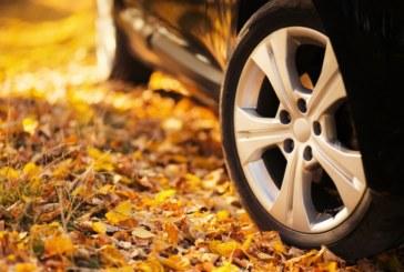 10 основни съвета за шофьорите през есента
