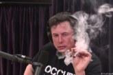 """Мъск запали цигара с марихуана на интервю, акциите на """"Тесла"""" се сринаха"""