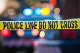 Задържаха мъж с електрошоков пистолет пред Бъкингамския дворец