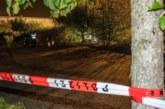 Българска проститутка убита в Германия