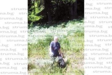 Богата есенна реколта изкара от двора на къщата си в Банско бившият зам. ректор на ЮЗУ проф. Атанас Попов