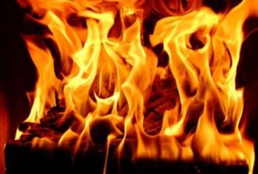 6 пожара гасиха огнеборците в Кюстендилско