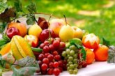 Състезания по подреждане на тикви, носене на сливи в лъжица, белене на картофи на Празника на плодородието в Кюстендил