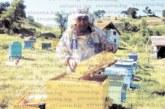 Популярният благоевградчанин Давид Манов отглежда 100 пчелни кошера в ранчо на 1 км от границата с Македония, признава: Медът е сред най-фалшифицираните продукти след алкохола и млечните, пазарите са пълни с ментета, а контрол няма, чиновниците в Агенцията по храните си стоят в канцелариите и си получават заплатите