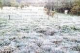 Слана попари градините в Югозапада, температурите паднаха до -3 градуса
