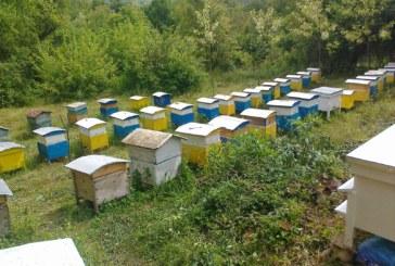 Бизнесменът Г. Милтенов иска да купи 1.6 дка общинска нива в Сапарева баня, ще разширява пчелина си