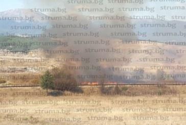13 дка сухи треви изгоряха при пожари в землищата на Разлог и Баня