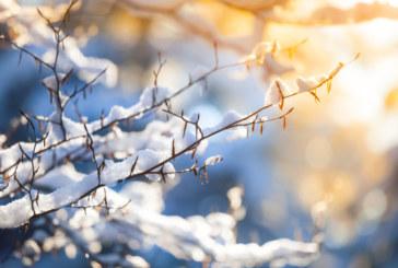 Рязко понижение на температурите, на места може да превали сняг