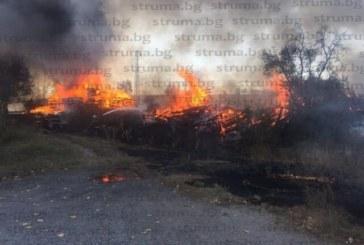 Огнен ужас! Голям пожар лумна до ж.п. линията в Пернишко