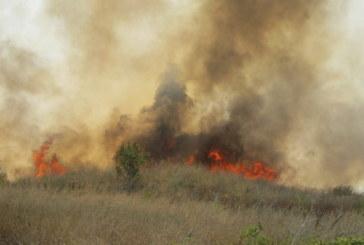 Пожар гори край София