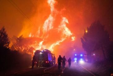 Огромен пожар пламна в национален парк в Португалия