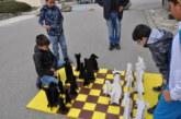 Шах на открито в Разлог