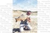 """Футболист на """"Места"""" се похвали с трофеен улов – 4,8 кг шаран, с треньора му обещаха на съотборниците си банкет с двустепенно меню – риба и дивеч"""