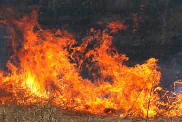 Пожар на метри от къщите в благоевградско село
