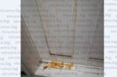 """Жители на кв. """"Изток"""" в потрес! Деца чупиха яйца по стените на саниран блок на Хелоуин"""