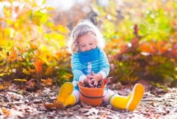 Топло начало на ноември: Очаква ни суха и слънчева седмица
