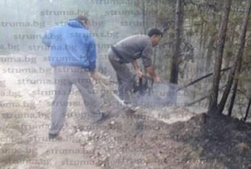 Овладяха пожара край Белица