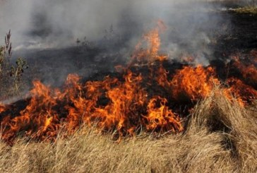Огнеборци гасиха пожар в Разлог