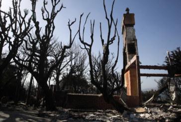 Нови жертви на пожарите в Калифория, 13 изгоряха живи в автомобилите си
