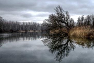 Трагедия! Певица загина, колата й падна в река Дунав