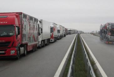 Повече разходи за българските превозвачи след европейската реформа в превозите