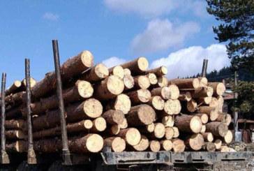 Полицаи нахлуха във фабрика за пелети в Разлог, сгащиха контрабандна дървесина