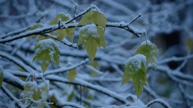 Синоптиците с мразовита прогноза! Облачна сутрин, температури до минус 6°
